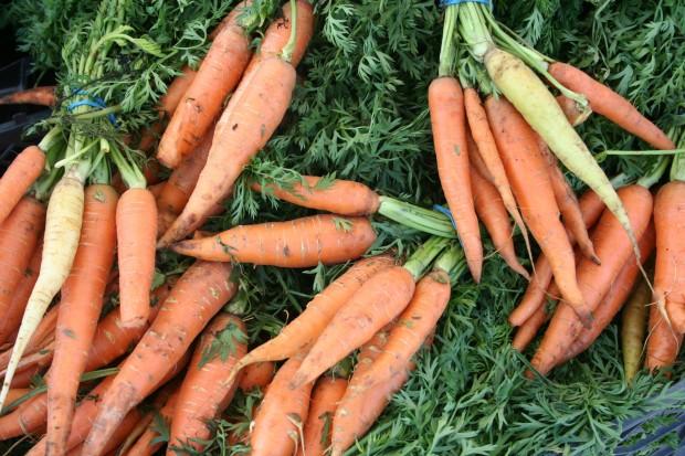 carrots jersey fresh farmers market