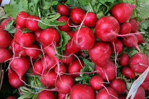 Red Radishes ~ Don't Mean A Thing If They Ain't Got That Zing