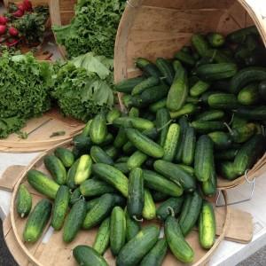 Jerseyfresh Farmers' Market Cucumbers