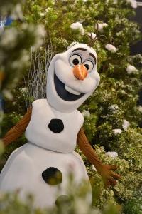 Olaf Disney Frozen Meet Greet