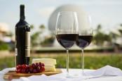 disney epcot food wine 2016