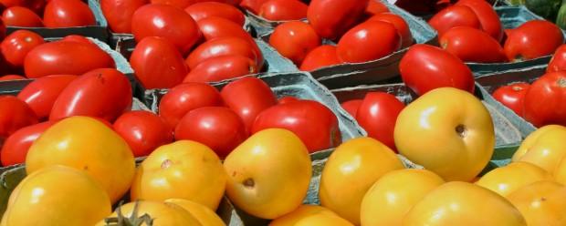 Jersey Fresh Tomatoes Tomato